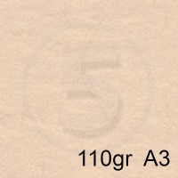 Special Paper Special Paper Carta SKIN AVORIO A3 110gr