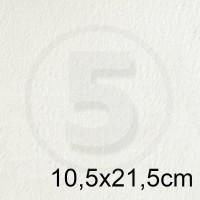 Biglietto in carta CANALETTO GG AVORIO formato 10,5x21,5cm 125gr