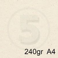 Special Paper Carta FLORA AVORIO A4 240gr
